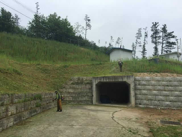 정수장 주변 환경정비로 깨끗한 물 공급1.jpg